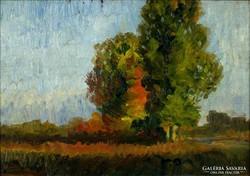 Magyar festő, XX. sz. első fele : Patakparti táj