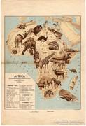 Afrika jellemzőbb gerinces állatai, térkép 1928, eredeti