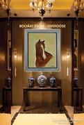 Bolyáki Zsolt – Overdose