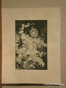 Olvashatatlan jelz. : Ikebana