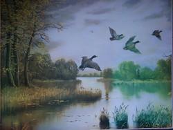 Vízpart madarakkal